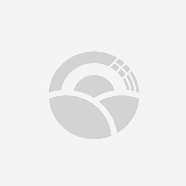 黑龙江省哈尔滨市北陆蓝莓 鲜果 2 - 4mm以上