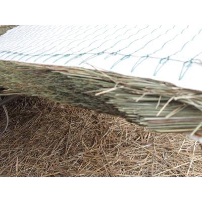 这是一张关于园艺资材 供应佳木斯乌拉草的产品图片