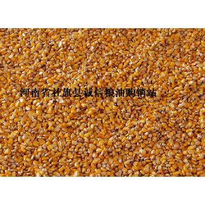 河南南阳玉米干粮 供玉米碎籽