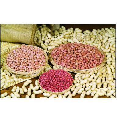 湖北襄樊白沙系列花生 花生米 干货 大量供应