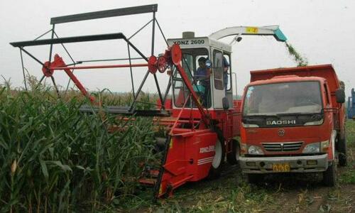 新型玉米秸秆收割机是如何收集玉米秆的