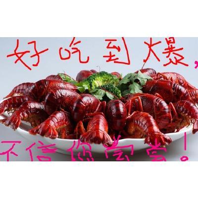 湖北武汉清水小龙虾 人工殖养 4-6钱 批发