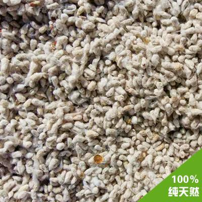 棉花 棉籽