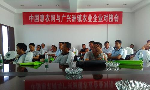 这是一张中国惠农网与广兴洲镇农业企业对接会圆满成功的配图