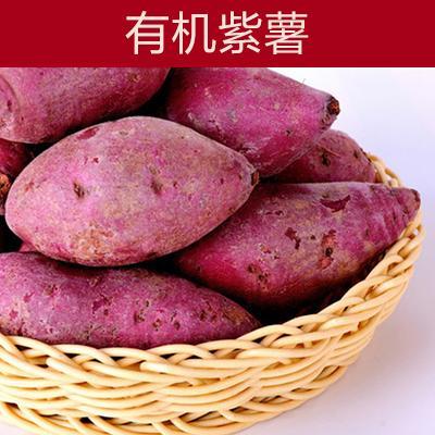 湖北襄樊紫罗兰紫薯 3~4两 有机紫薯