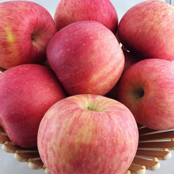 紅富士蘋果 80mm以上 片紅 紙+膜袋