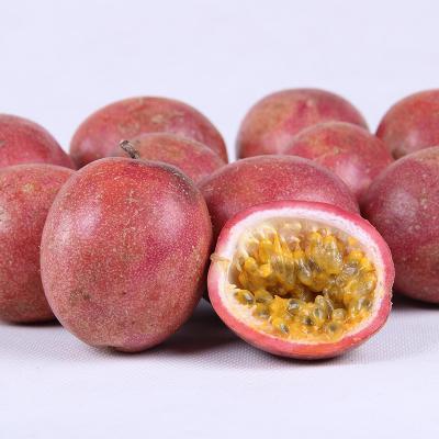 广西玉林紫红色百香果 80 - 90克