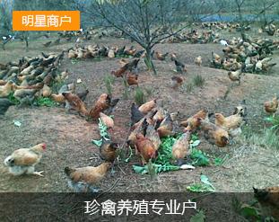 洞口县达园禽鱼联合养殖专业合作社