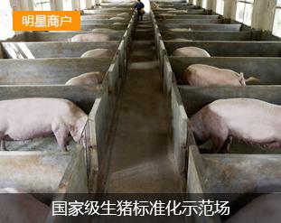 洞口天井原种猪扩繁场