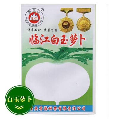 重庆永川区白玉春萝卜