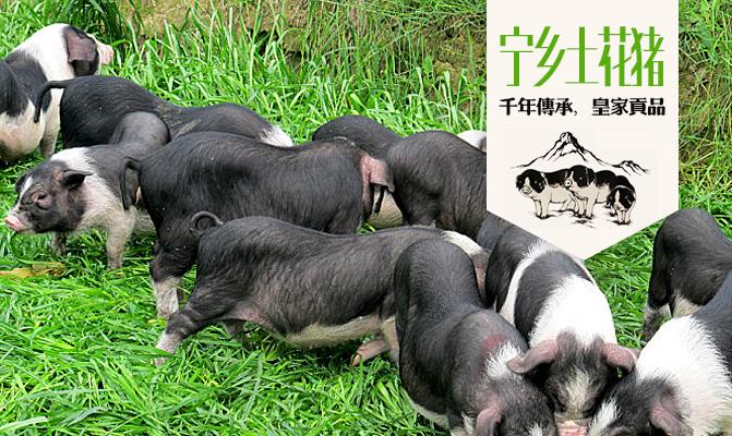 长沙鲜健农业科技有限公司