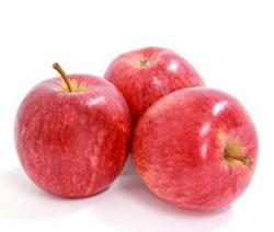 2016 陕西苹果 洛川苹果 70mm果以上