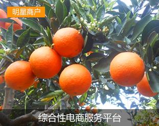 湖北省特色农产品_武汉楚洪特色农产品专业合作社湖北农业信息