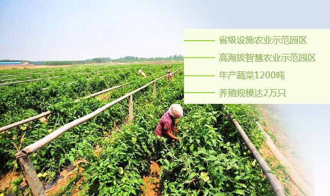 奇乐商贸有限责任公司种养殖合作社