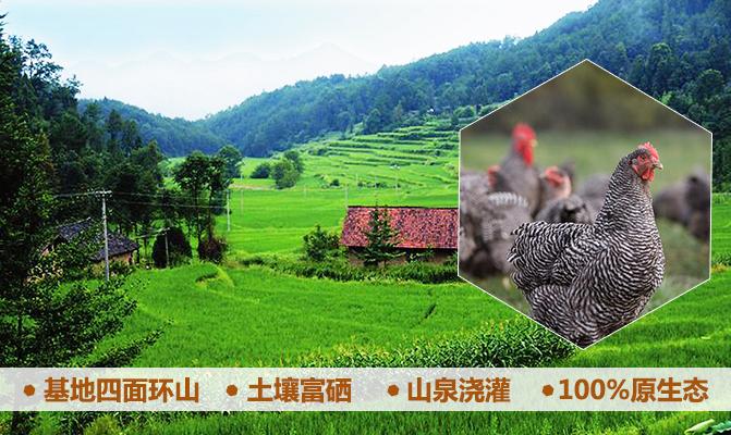 宜春小水农业开发有限公司