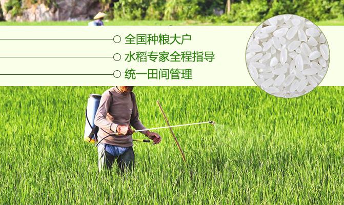 江西粒粒香生态农业发展有限公司