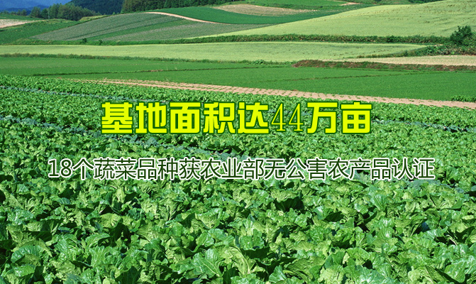 绿之源鲜蔬基地