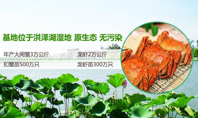 泗洪县柳山湖特种水产养殖专业合作社