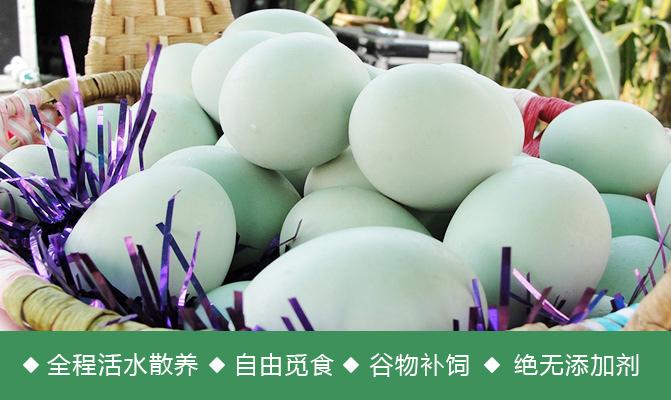 优质麻鸭青皮鸭蛋供应