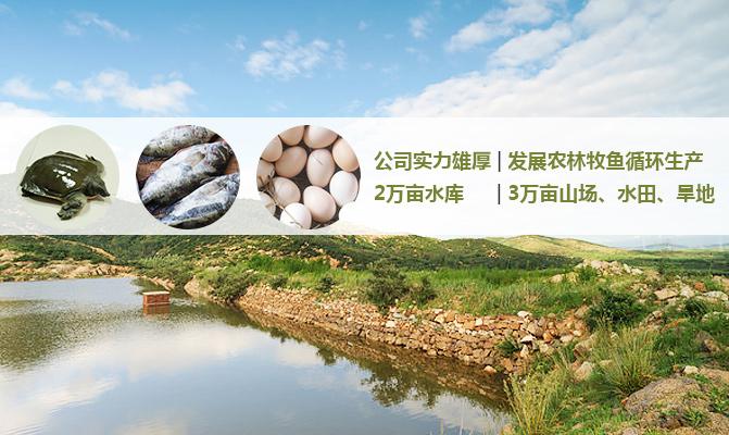 太湖县花凉亭农林生态科技有限公司