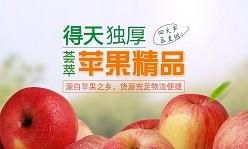 苹果批发采购专场