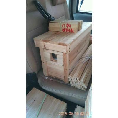广东惠州中蜂交尾箱