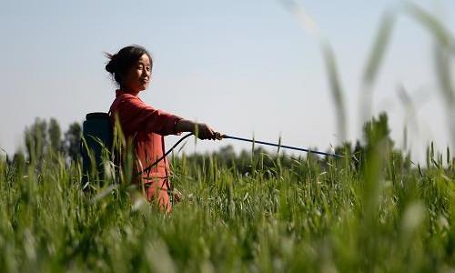 这是一张全国农药使用量零增长专题研讨会在广西举办的配图