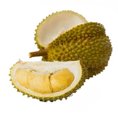 这是一张关于金枕头榴莲 2 - 3公斤 60 - 70%以上 榴莲 泰国金枕榴莲的产品图片
