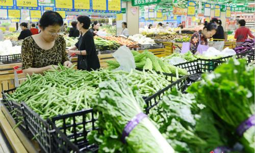 2016年河南中牟蔬菜价格低廉