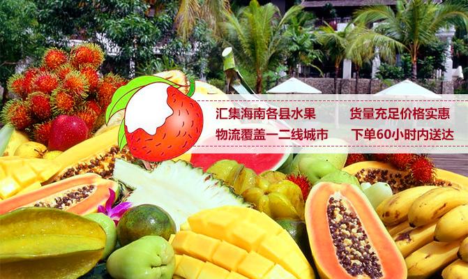 乐东春蕾南繁种养殖农民专业合作社