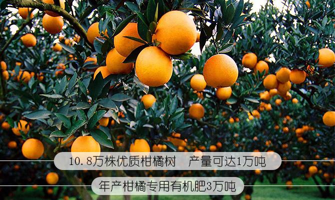 重庆圣沛农业科技有限公司
