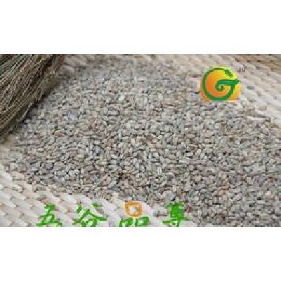 河南商丘供应低温烘焙原料 熟青稞批发   现磨豆浆  五谷磨坊磨粉专