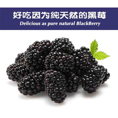 重庆荣昌县黑莓