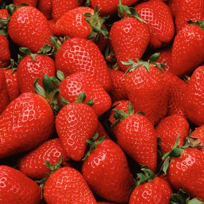 浙江金华奶油草莓草莓