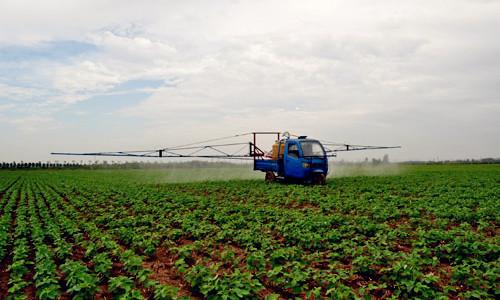这是一张新型产业技术农科组织浇灌食用豆成长的配图