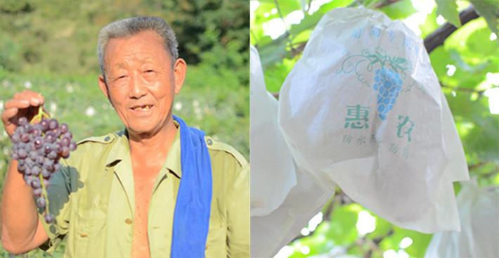 """【情满大泽】七旬老汉守山、绿山8年打造果园""""理想国"""""""