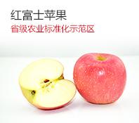 苹果 红富士苹果