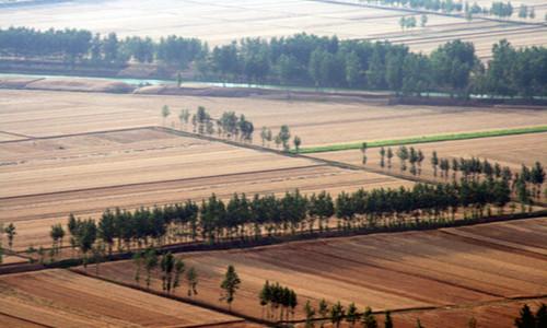 这是一张淮北市多措并举补现代农业发展短板的配图
