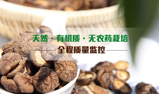 辽宁省阜蒙县大巴镇杜代村香菇种植基地