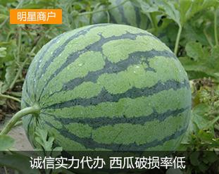小强水果蔬菜代办