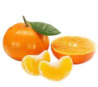 雪峰蜜橘雪峰蜜桔