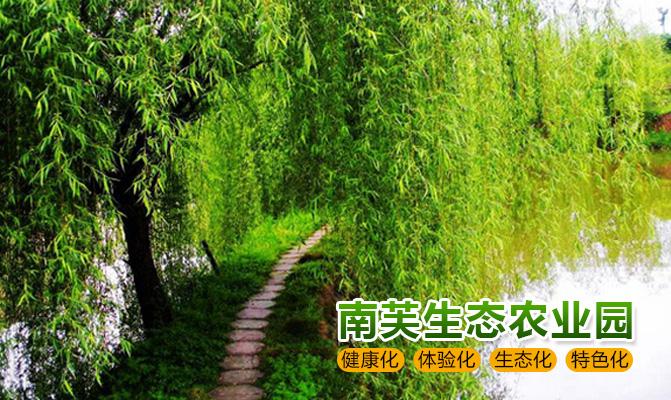 卢龙县诚信苗木基地