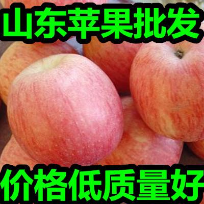 这是一张关于水晶富士苹果的产品图片