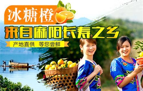 ****包邮    联系地址:湖南省怀化市麻阳苗族自治县隆家堡乡隆家堡村