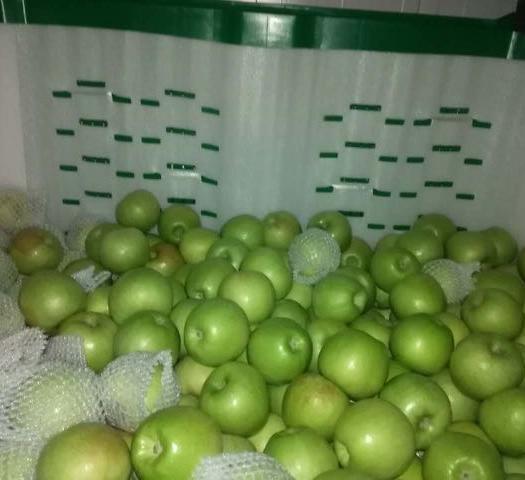 陜西省咸陽市乾縣澳洲青蘋果