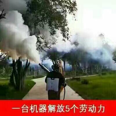 山东潍坊喷雾器 烟雾机水雾机