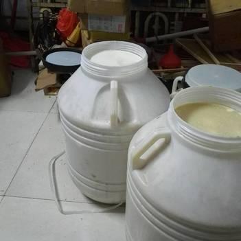 土蜂蜜 100% 2年 桶裝