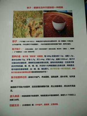 湖南省衡阳市常宁市粮食