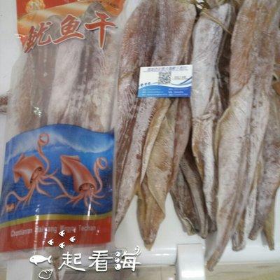 广东深圳东海鱿鱼