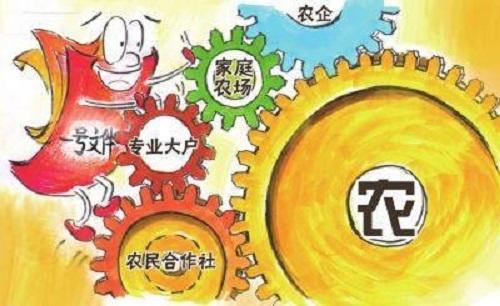 杏彩彩票 3